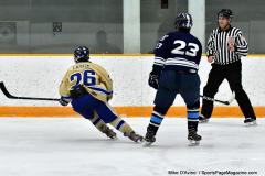CIACT D3 Ice Hockey; #8 Newtown 7 vs. #9 Wilton 2 - Photo # 2069