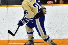 CIACT D3 Ice Hockey; #8 Newtown 7 vs. #9 Wilton 2 - Photo # 2071