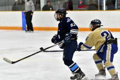 CIACT D3 Ice Hockey; #8 Newtown 7 vs. #9 Wilton 2 - Photo # 2080