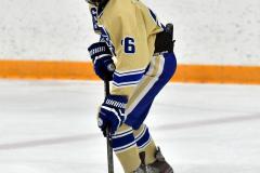 CIACT D3 Ice Hockey; #8 Newtown 7 vs. #9 Wilton 2 - Photo # 2081
