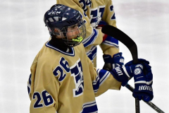 CIACT D3 Ice Hockey; #8 Newtown 7 vs. #9 Wilton 2 - Photo # 2234