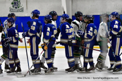 Gallery CIAC Ice Hockey; Northeastern 4 vs. Newtown 3 - Photo # 1976