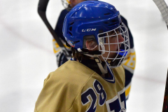 CIAC Ice Hockey; Focused on Newtown 7 vs. Mt. Everett 1 - Photo 336