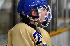 CIAC Ice Hockey; Focused on Newtown 7 vs. Mt. Everett 1 - Photo 825