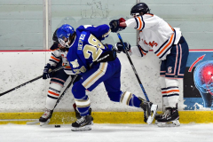 CIAC Ice Hockey; L.H.- H-K, Cogin. 8 vs Newtown 1 - Photo # (317)