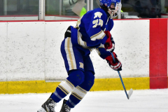 CIAC Ice Hockey; L.H.- H-K, Cogin. 8 vs Newtown 1 - Photo # (432)