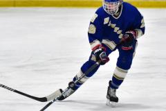 CIAC Ice Hockey; L.H.- H-K, Cogin. 8 vs Newtown 1 - Photo # (812)