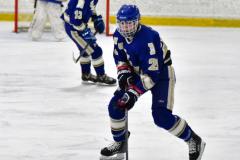CIAC Ice Hockey; L.H.- H-K, Cogin. 8 vs Newtown 1 - Photo # (815)