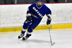 CIAC Ice Hockey; L.H.- H-K, Cogin. 8 vs Newtown 1 - Photo # (857)