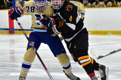 CIAC Ice Hockey; Newtown 2 vs. Daniel Hand 6 - Photo # 1065