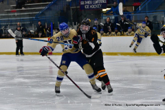 CIAC Ice Hockey; Newtown 2 vs. Daniel Hand 6 - Photo # 1066