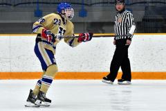 CIAC Ice Hockey; Newtown 2 vs. Daniel Hand 6 - Photo # 1136
