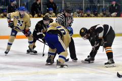 CIAC Ice Hockey; Newtown 2 vs. Daniel Hand 6 - Photo # 1279