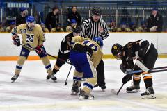 CIAC Ice Hockey; Newtown 2 vs. Daniel Hand 6 - Photo # 1281