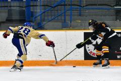 CIAC Ice Hockey; Newtown 2 vs. Daniel Hand 6 - Photo # 1372