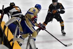 CIAC Ice Hockey; Newtown 2 vs. Daniel Hand 6 - Photo # 1491