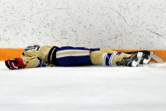 CIAC Ice Hockey; Newtown 2 vs. Daniel Hand 6 - Photo # 1572