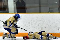 CIAC Ice Hockey; Newtown 2 vs. Daniel Hand 6 - Photo # 1574