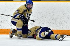 CIAC Ice Hockey; Newtown 2 vs. Daniel Hand 6 - Photo # 1577