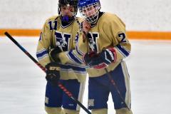 CIAC Ice Hockey; Newtown 2 vs. Daniel Hand 6 - Photo # 1585
