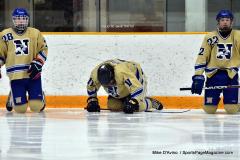 CIAC Ice Hockey; Newtown 2 vs. Daniel Hand 6 - Photo # 1671