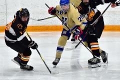 CIAC Ice Hockey; Newtown 2 vs. Daniel Hand 6 - Photo # 1732
