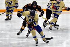 CIAC Ice Hockey; Newtown 2 vs. Daniel Hand 6 - Photo # 1733
