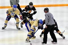 CIAC Ice Hockey; Newtown 2 vs. Daniel Hand 6 - Photo # 499