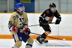 CIAC Ice Hockey; Newtown 2 vs. Daniel Hand 6 - Photo # 619