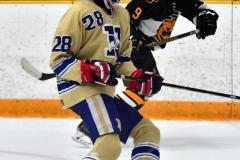 CIAC Ice Hockey; Newtown 2 vs. Daniel Hand 6 - Photo # 620