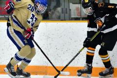 CIAC Ice Hockey; Newtown 2 vs. Daniel Hand 6 - Photo # 636
