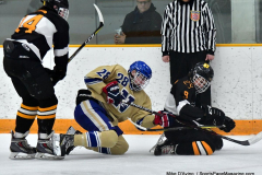 CIAC Ice Hockey; Newtown 2 vs. Daniel Hand 6 - Photo # 640