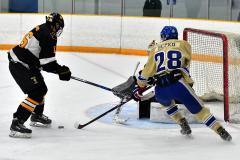 CIAC Ice Hockey; Newtown 2 vs. Daniel Hand 6 - Photo # 682
