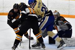 CIAC Ice Hockey; Newtown 2 vs. Daniel Hand 6 - Photo # 686