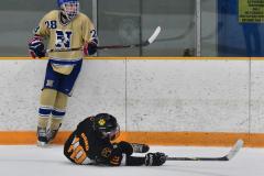 CIAC Ice Hockey; Newtown 2 vs. Daniel Hand 6 - Photo # 707