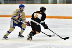 CIAC Ice Hockey; Newtown 2 vs. Daniel Hand 6 - Photo # 715