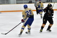 CIAC Ice Hockey; Newtown 2 vs. Daniel Hand 6 - Photo # 731