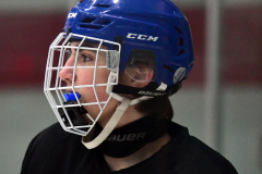 CIAC Ice Hockey; Newtown 4 vs. SH,LI,TH,NO 1 - Photo # (167)