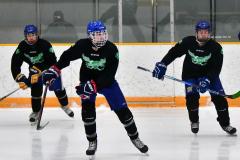 CIAC Ice Hockey; Newtown 4 vs. SH,LI,TH,NO 1 - Photo # (17)