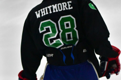 CIAC Ice Hockey; Newtown 4 vs. SH,LI,TH,NO 1 - Photo # (23)