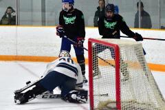 CIAC Ice Hockey; Newtown 4 vs. SH,LI,TH,NO 1 - Photo # (378)