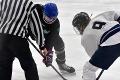 CIAC Ice Hockey; Newtown 4 vs. SH,LI,TH,NO 1 - Photo # (400)