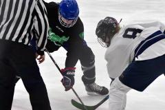 CIAC Ice Hockey; Newtown 4 vs. SH,LI,TH,NO 1 - Photo # (401)