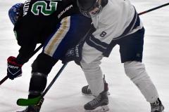 CIAC Ice Hockey; Newtown 4 vs. SH,LI,TH,NO 1 - Photo # (405)