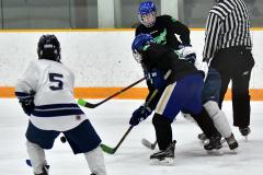 CIAC Ice Hockey; Newtown 4 vs. SH,LI,TH,NO 1 - Photo # (441)