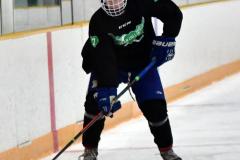 CIAC Ice Hockey; Newtown 4 vs. SH,LI,TH,NO 1 - Photo # (636)