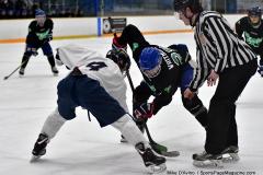 CIAC Ice Hockey; Newtown 4 vs. SH,LI,TH,NO 1 - Photo # (698)
