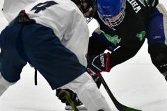 CIAC Ice Hockey; Newtown 4 vs. SH,LI,TH,NO 1 - Photo # (699)