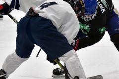 CIAC Ice Hockey; Newtown 4 vs. SH,LI,TH,NO 1 - Photo # (700)