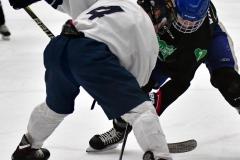 CIAC Ice Hockey; Newtown 4 vs. SH,LI,TH,NO 1 - Photo # (701)